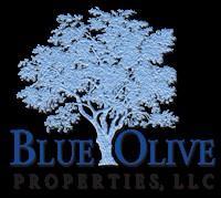 BLUE OLIVE PROPERTIES