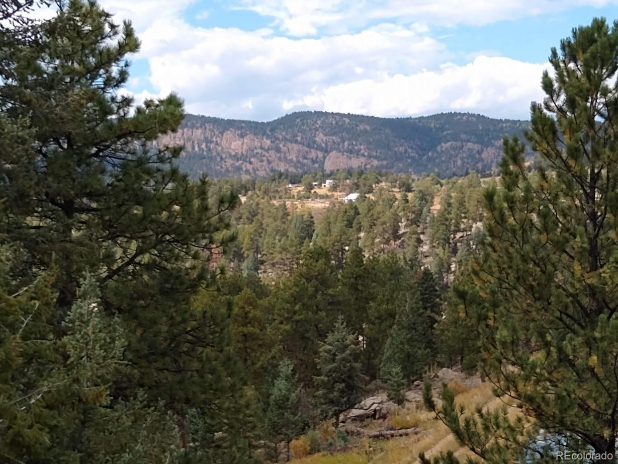 34461 Whispering Pines, Pine, CO