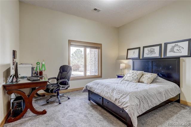 1496 Eagle, Windsor, CO