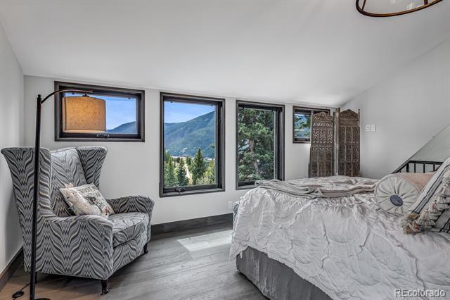 1340 McLaughlin, Basalt, CO