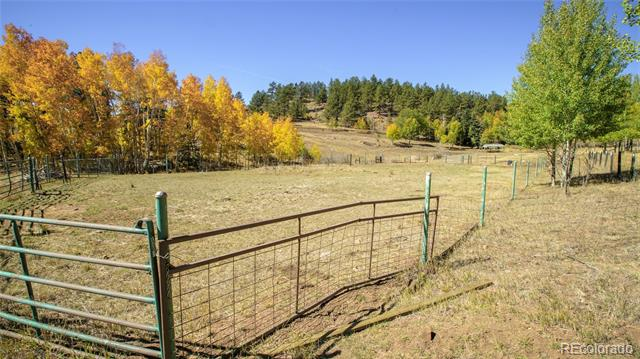 4687 Highway 24, Florissant, CO
