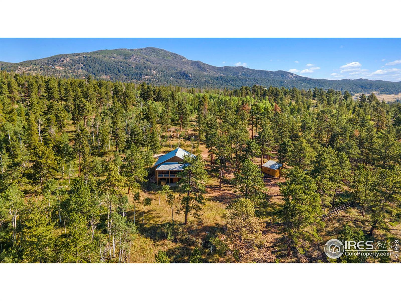 95 Marmot, Red Feather Lakes, CO