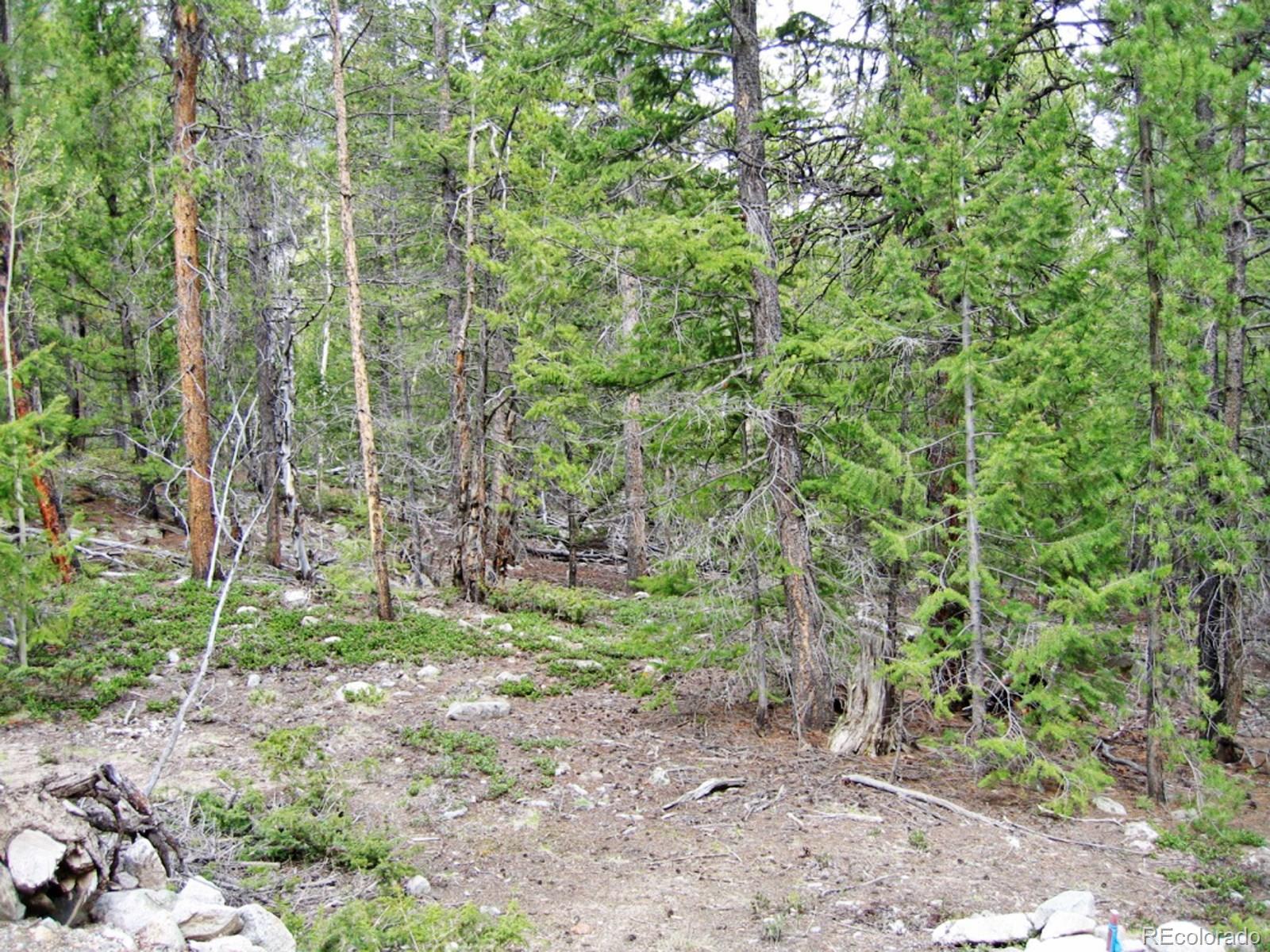 CR 292A, Alpine, CO