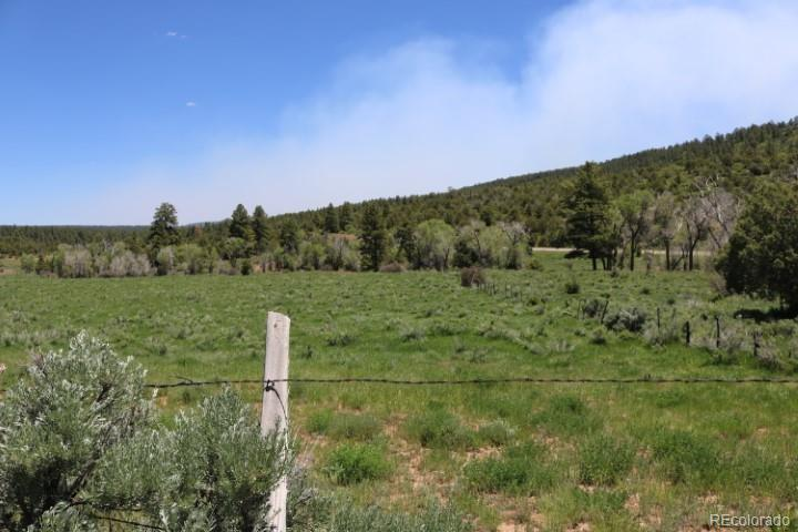 AA, Dolores, CO