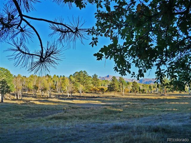 Miller Tracts, Placerville, CO