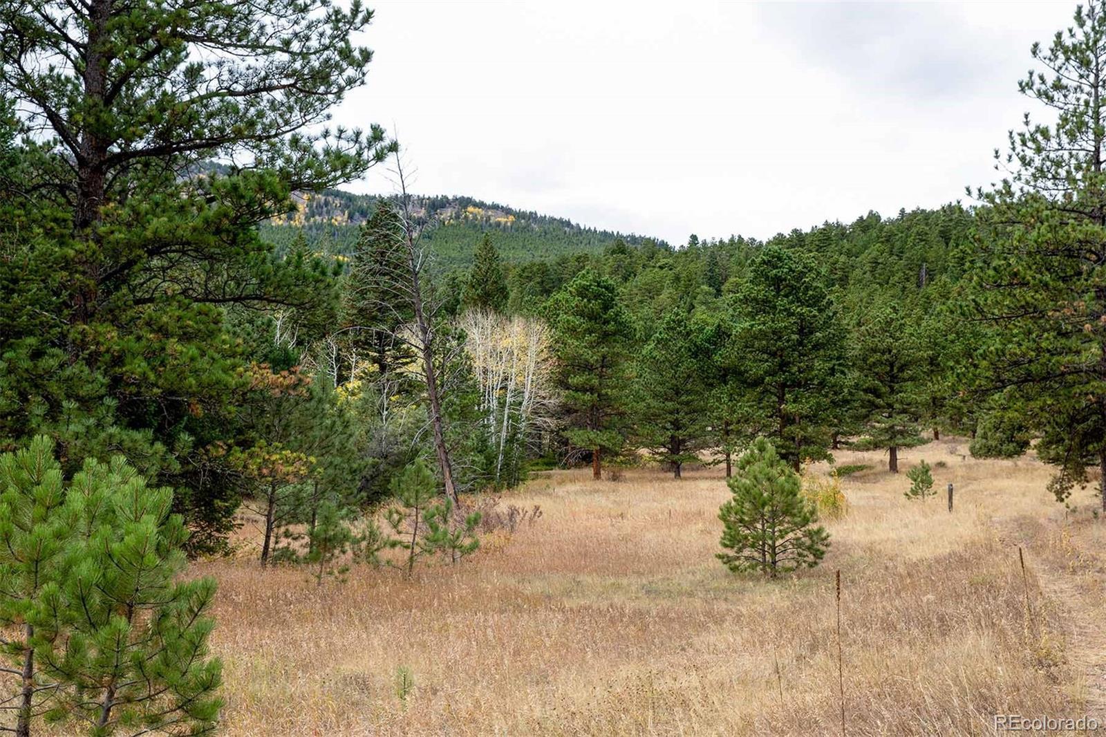 575 Spruce, Lyons, CO