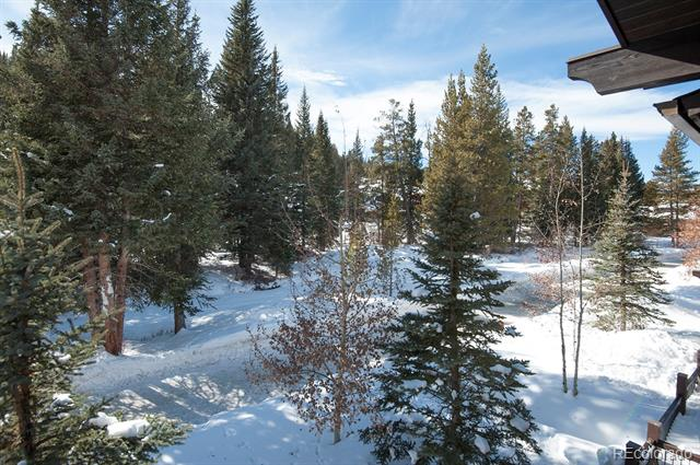 35 Union Creek, Copper Mountain, CO