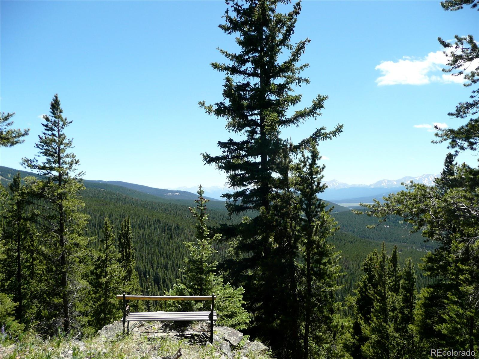 Forest Service 731, Red Cliff, CO