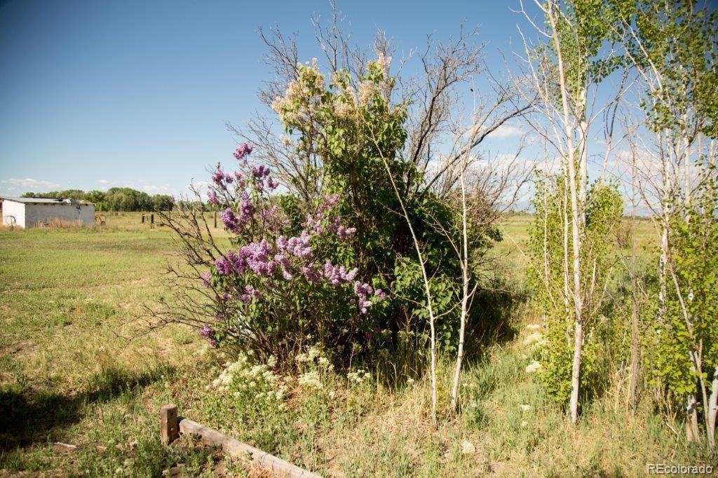 2318 Stanley, Alamosa, CO