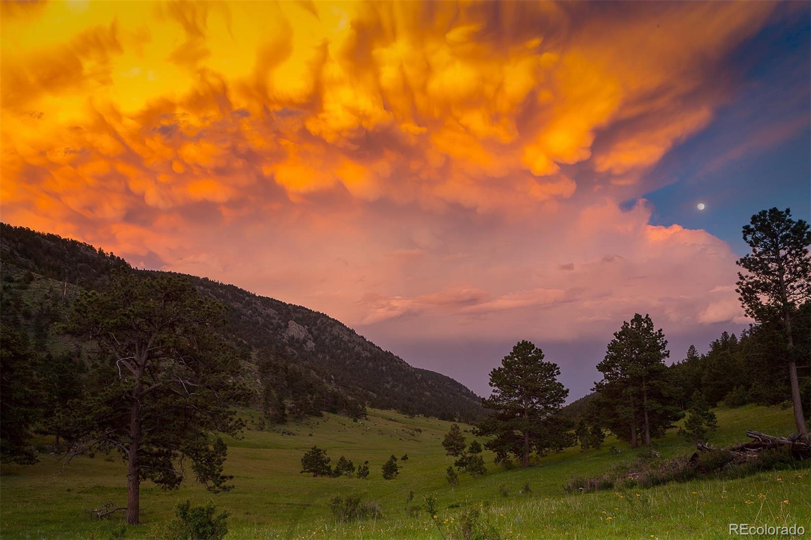 2480 Saddle Notch, Loveland, CO