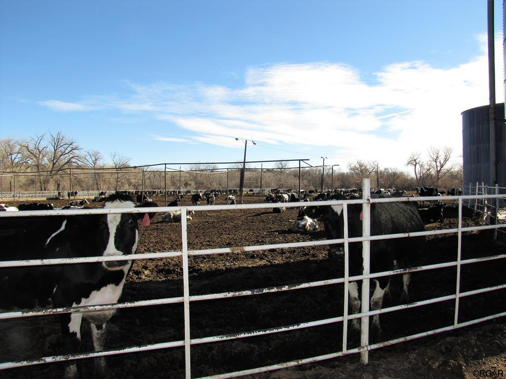 800 N Frazier Avenue, Florence, CO